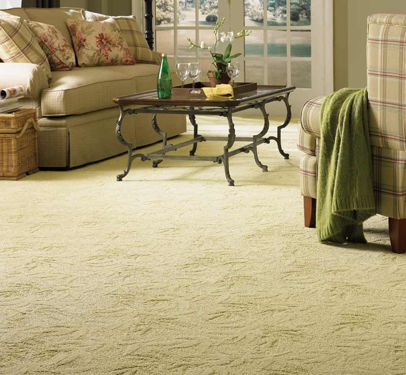 elegant floor carpet for home decoration
