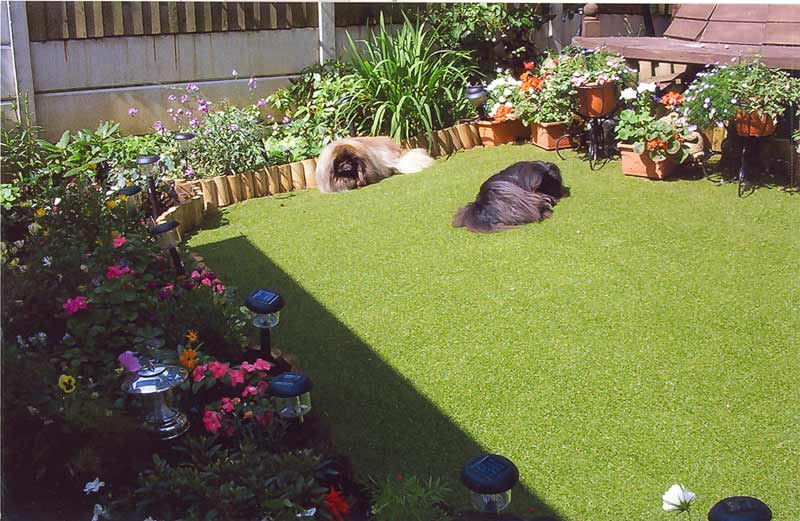 unreal turf carpet for lawn