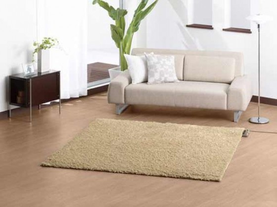 Elegant carpet padding for home