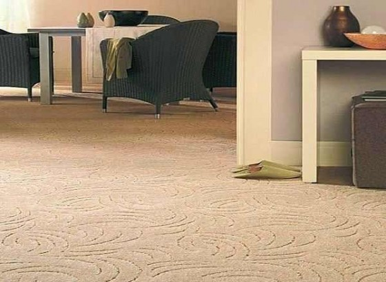 Cheap carpet padding ideas for Cheap wall to wall carpet