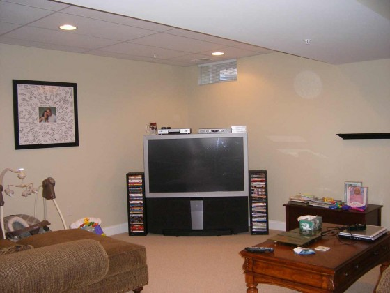 Best carpet for basement family room feel the home for Best carpet for family room
