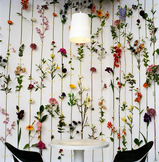 Perfect DIY Wall Flower 530 x 540 · 68 kB · jpeg