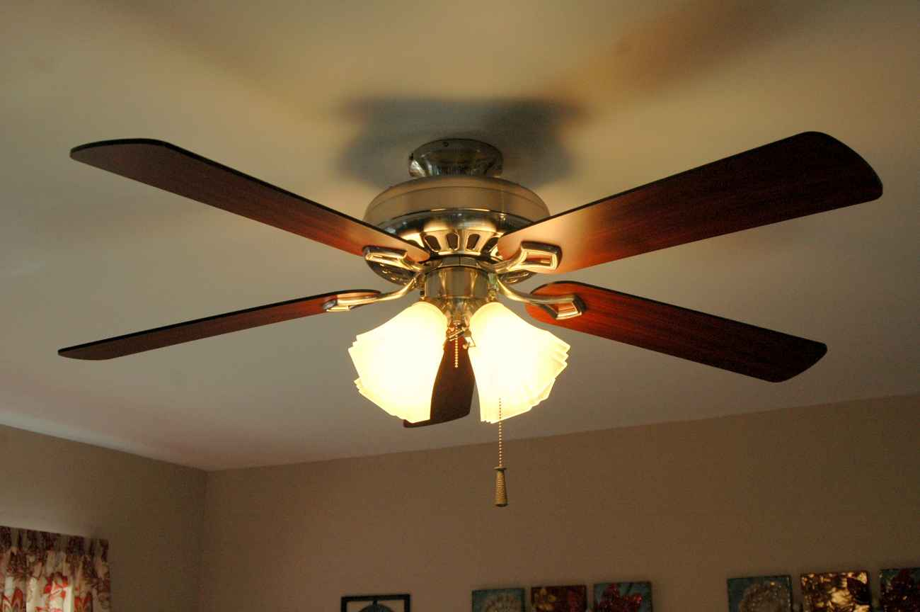 Elegant ceiling fan for home