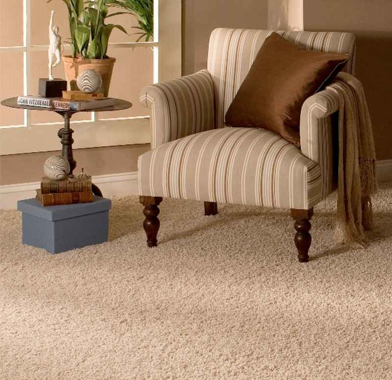 Stainmaster PLain Flooring Carpet