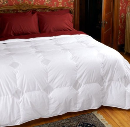 Cuddledown Temperature Regulating 800 Fill Power Down Comforter, Queen, Level 2, White