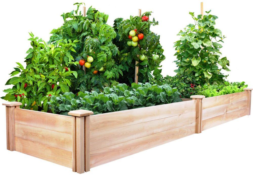 Greenes Cedar Raised Garden Kit 2 Ft. X 8 Ft. X 10.5 In.