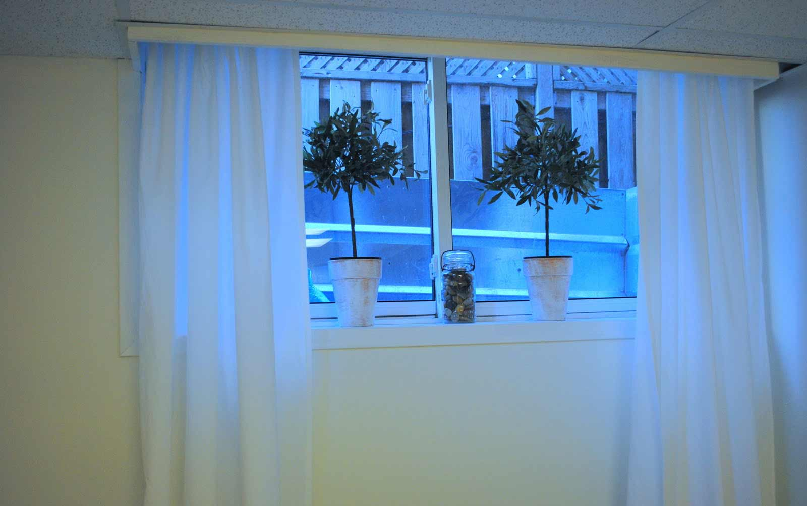white basement window curtains with plant pot