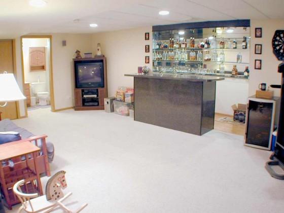 Clear Carpet for Basement