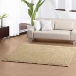 Elegant carpet padding for home