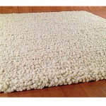 Wool Rug Carpeting Types for Living Room