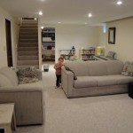 anti bacteria home basement carpet