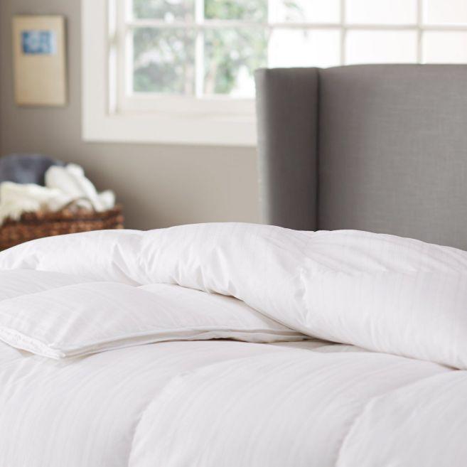 Pinzon Hypoallergenic Medium Warmth White Goose Down Comforter - Full/Queen